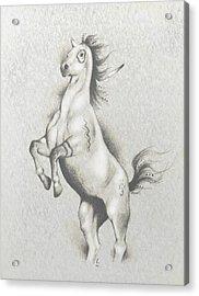 Spirit Horse Acrylic Print by Robert Martinez
