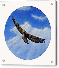 Spirit In The Wind Acrylic Print by Brian  Commerford