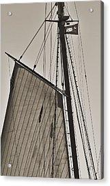 Spirit Of South Carolina Schooner Sailboat Sail Acrylic Print by Dustin K Ryan