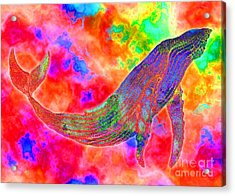 Spirit Whale Acrylic Print by Nick Gustafson
