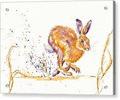 Splash Acrylic Print by Debra Hall