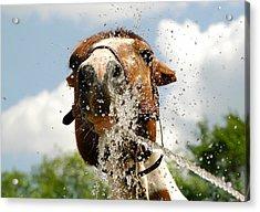 Splash In The Face Acrylic Print by Joy Alfandre