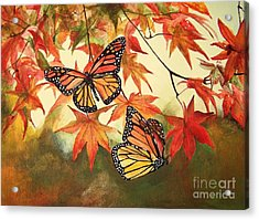 Splendor Acrylic Print by Laneea Tolley