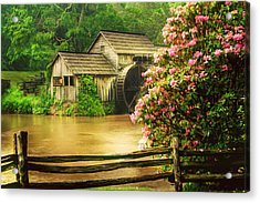 Spring At The Mill Acrylic Print by Darren Fisher