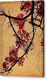Spring Bloosom In Maldives. Flamboyant Tree I.  Japanese Style Acrylic Print by Jenny Rainbow
