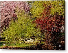 Spring Colors Acrylic Print by Juergen Roth