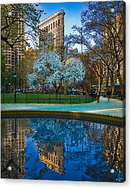 Spring In Madison Square Park Acrylic Print by Chris Lord