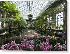 Spring Indoors Acrylic Print by Phil Abrams