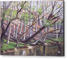 Spring, Monocacy Creek Acrylic Print by Grace Keown