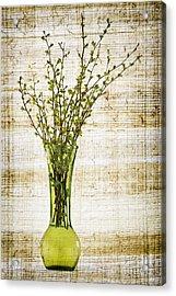 Spring Vase Acrylic Print by Elena Elisseeva