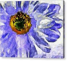 Spring Whimsy Acrylic Print by Krissy Katsimbras
