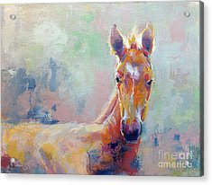 Sprout Acrylic Print by Kimberly Santini