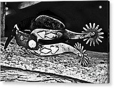 Spurs  Acrylic Print by Juls Adams