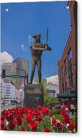 St. Louis Cardinals Busch Stadium Stan Musial Roses Acrylic Print by David Haskett