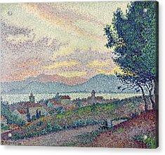 St Tropez Pinewood Acrylic Print by Paul Signac