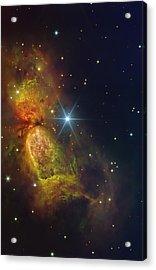 Star Creation Acrylic Print by Paul Van Scott