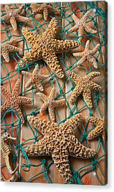 Starfish In Net Acrylic Print by Garry Gay