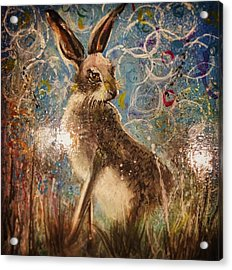 Staring Hare  Acrylic Print by Carole Hall