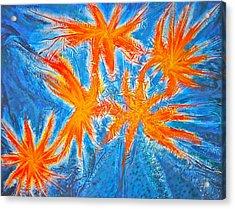 Stars Acrylic Print by Marie Halter