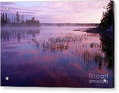 Steamy And Colorful Bay Acrylic Print by Sandra Updyke