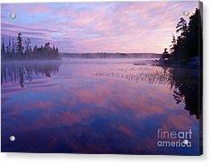 Steamy Pinks Acrylic Print by Sandra Updyke