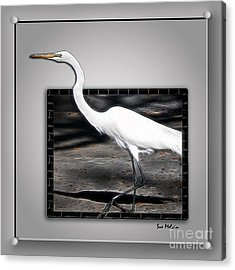 Stepping Out Into A New Dimension Acrylic Print by Sue Melvin