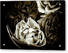 Still Life With Roses Acrylic Print by Frank Tschakert