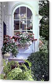 Stockbridge Window Boxes Acrylic Print by David Lloyd Glover