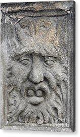 Stone Face Acrylic Print by Michal Boubin