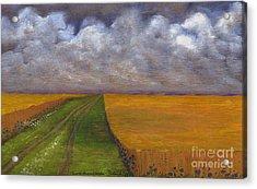 Storm Is Coming Acrylic Print by Anna Folkartanna Maciejewska-Dyba