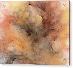 Stormy Acrylic Print by David Lane