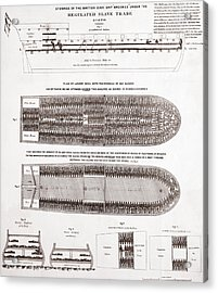 Stowage Of The British Slave Ship Brookes Under The Regulated Slave Trade Act  Acrylic Print by American School