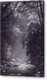 Stream Light B W Acrylic Print by Steve Gadomski