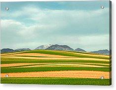 Stripes Of Crops Acrylic Print by Todd Klassy