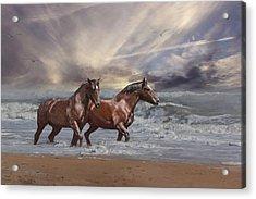 Strolling On The Beach Acrylic Print by Michele Loftus