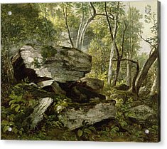 Study From Nature   Rocks And Trees Acrylic Print by Asher Brown Durand