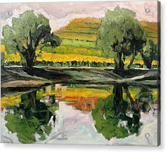 Study Of Reflections And Vineyard Acrylic Print by Kevin Davidson