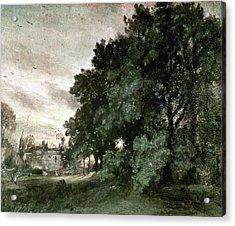 Study Of Trees Acrylic Print by John Constable