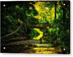 Summer Creek Acrylic Print by Thomas Woolworth