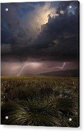 Summer Lights Acrylic Print by Franz Schumacher