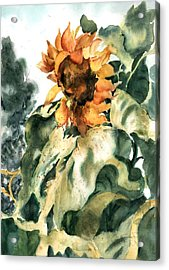 Sundancer Acrylic Print by Barbara Jung