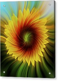 Sunflower Beams Acrylic Print by Terry DeLuco