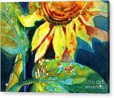 Sunflower Head 4 Acrylic Print by Kathy Braud