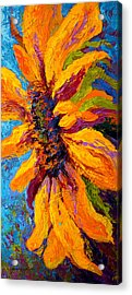 Sunflower Solo II Acrylic Print by Marion Rose