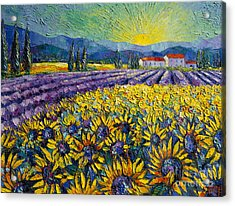 Sunflowers And Lavender Field - The Colors Of Provence Acrylic Print by Mona Edulesco