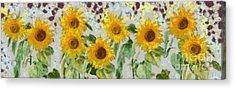 Sunflowers Wide Acrylic Print by Edward Fielding
