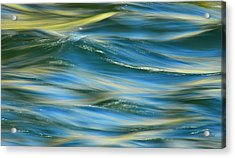 Sunlight Over The River Acrylic Print by Donna Blackhall
