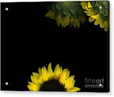 Sunrise Acrylic Print by Christian Slanec