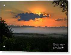 Sunrise In The Swamp-3 Acrylic Print by Robert Pearson