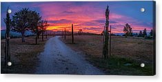 Sunrise Over Provence, France Acrylic Print by Robert Brown